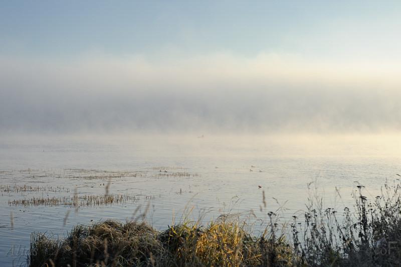 Утренний туман над Волгой