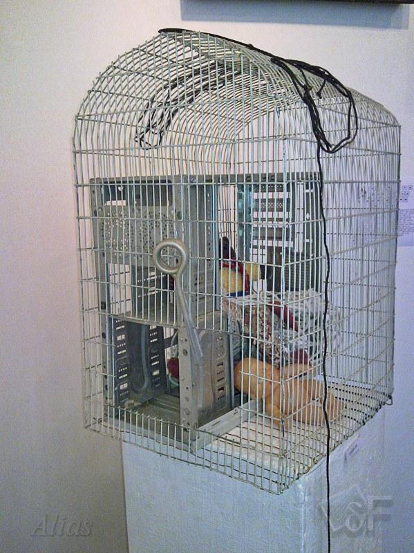 """Инсталляция с птичьей клеткой """"Ловушка"""""""