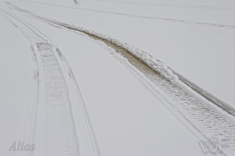 Следы на снегу от Динго и Каюбра